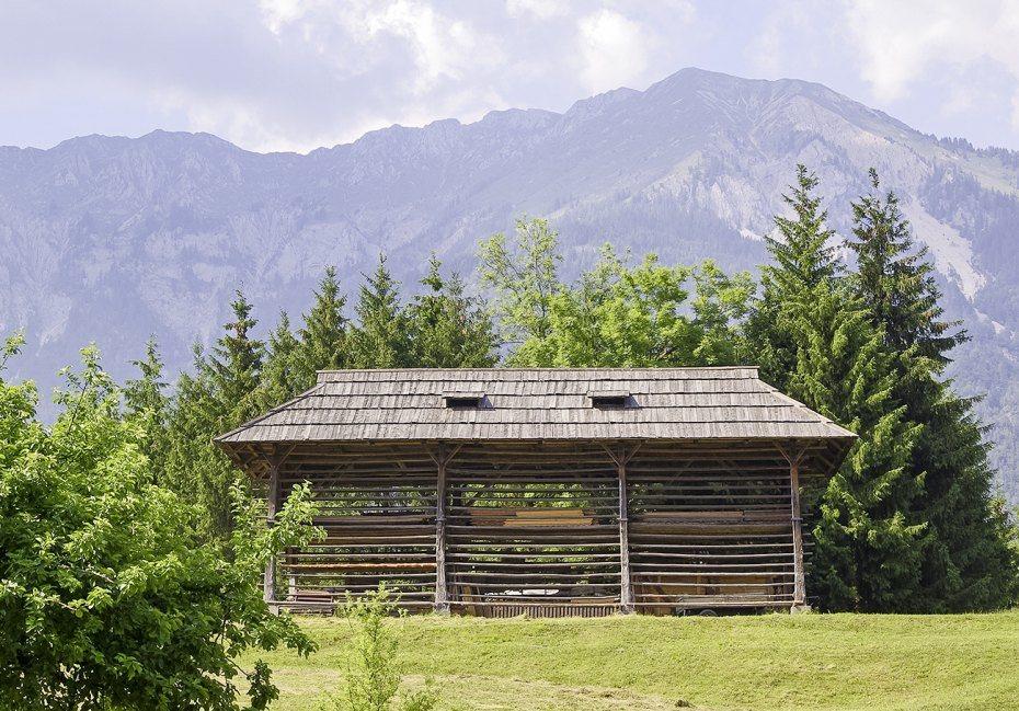 Image: Veliki kozolec