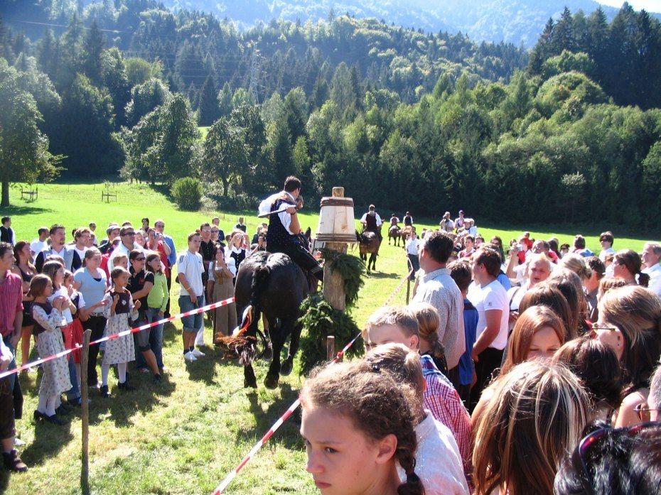 Image: Štehvanje v Draščah, 2006